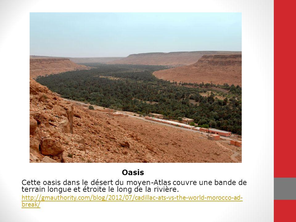 Cette oasis dans le désert du moyen-Atlas couvre une bande de terrain longue et étroite le long de la rivière. http://gmauthority.com/blog/2012/07/cad
