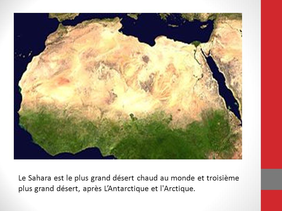 Le Sahara est le plus grand désert chaud au monde et troisième plus grand désert, après LAntarctique et l'Arctique.