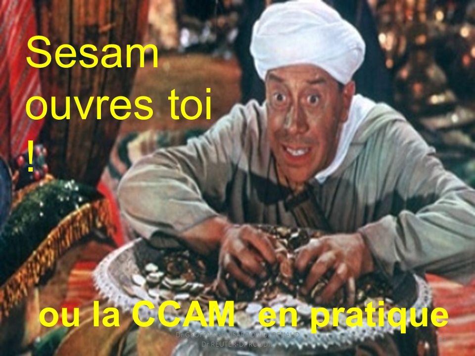 Sesam ouvres toi ! ou la CCAM en pratique 87 Dr GEOFFRAY-Dr ISARDON-Dr RENAUD Dr REUTER-Dr ROUDIL