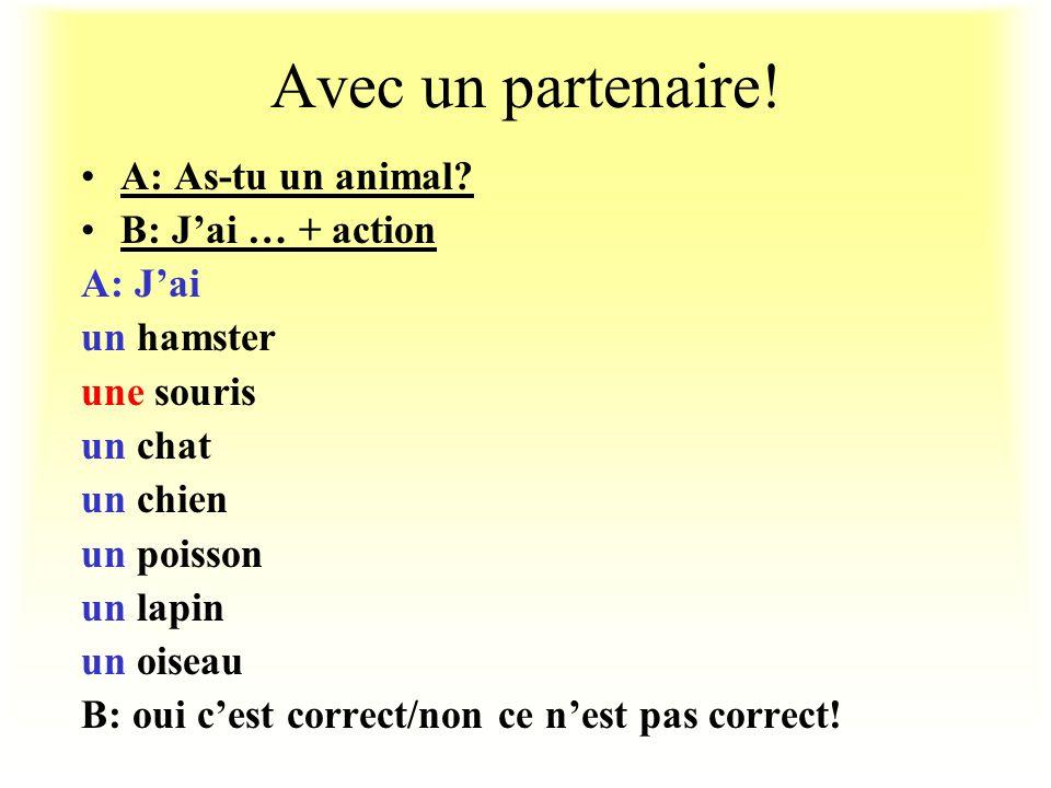 Avec un partenaire.A: As-tu un animal.