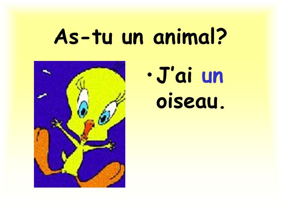 As-tu un animal? Jai un oiseau.