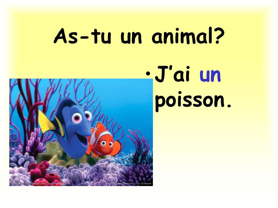 As-tu un animal? Jai un poisson.
