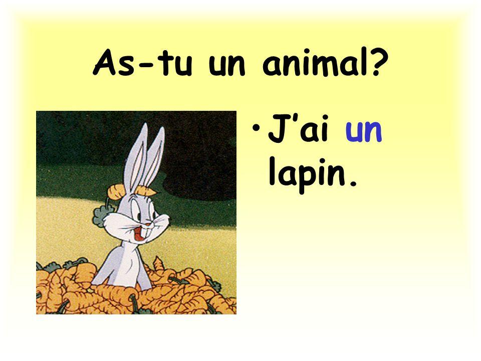As-tu un animal? Jai un lapin.