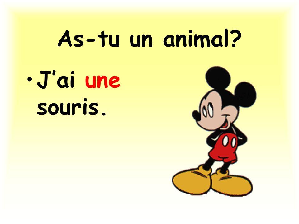 As-tu un animal? Jai une souris.