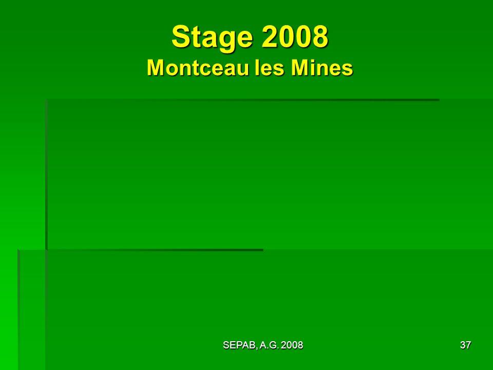 SEPAB, A.G. 200837 Stage 2008 Montceau les Mines