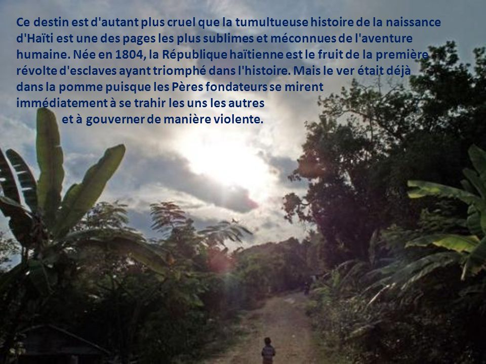 Gonaïves et sa déforestation