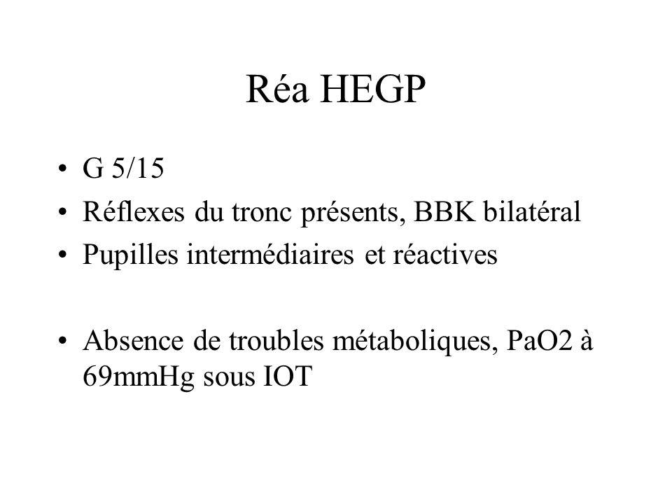 Réa HEGP TDM de contrôle: aggravation des lésions: –Hypodensité cérébrale diffuse prédominant à gauche Décision(avec accord de la famille) de lextubation le 12/11/08 et de soins de fin de vie Transfert en médecine interne le 20/11/08