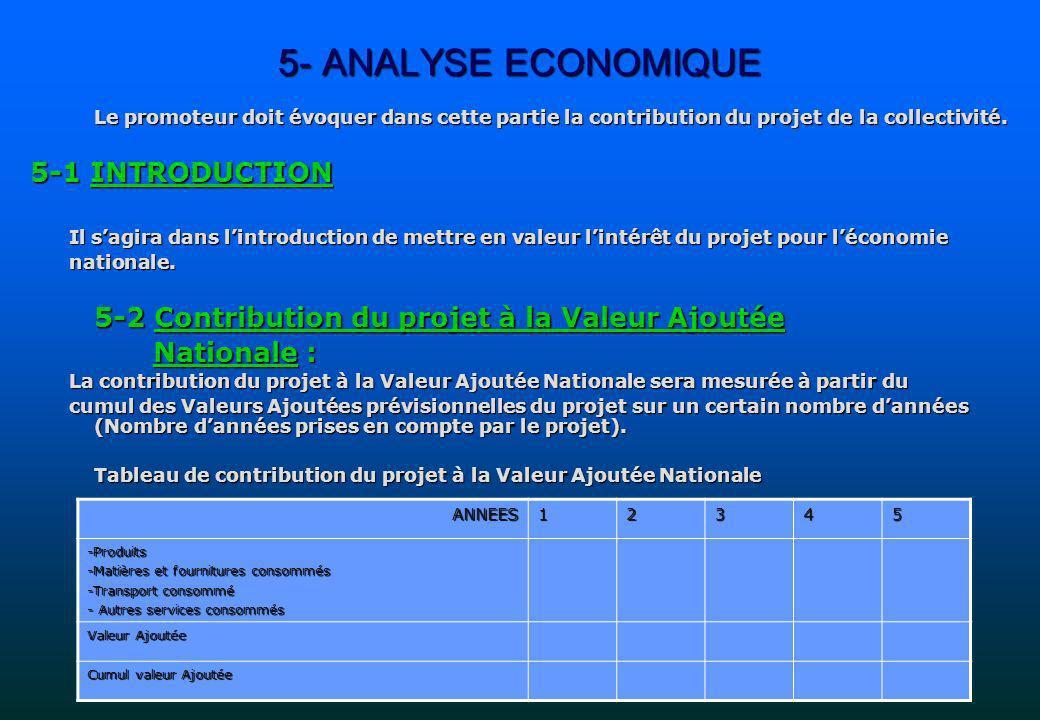 5- ANALYSE ECONOMIQUE Le promoteur doit évoquer dans cette partie la contribution du projet de la collectivité. 5-1 INTRODUCTION Il sagira dans lintro