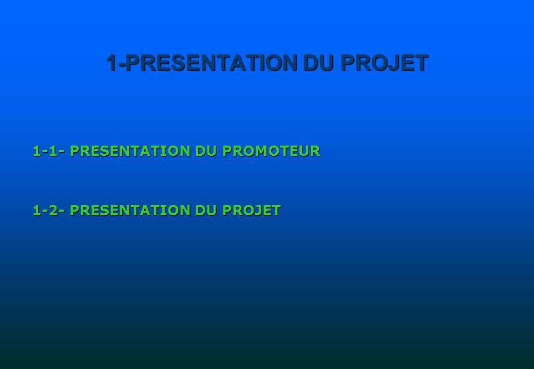 1-1- PRESENTATION DU PROMOTEUR CAS DUN PROMOTEUR INDIVIDUEL Lengagement et la maîtrise du projet du promoteur sont des facteurs essentiels dans la réussite du projet.