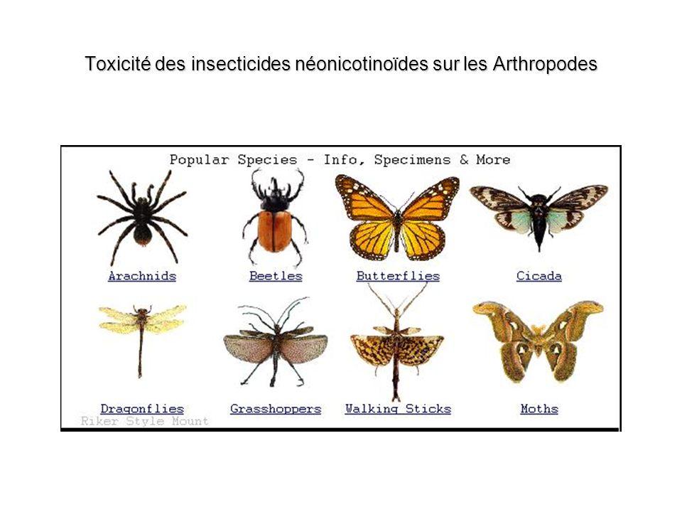 Toxicité des insecticides néonicotinoïdes sur les Arthropodes