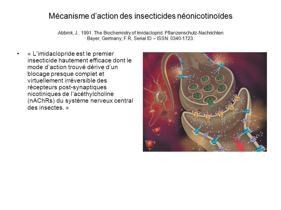 Mécanisme daction des insecticides néonicotinoïdes Abbink, J., 1991. The Biochemistry of Imidacloprid. Pflanzenschutz-Nachrichten Bayer, Germany, F.R,