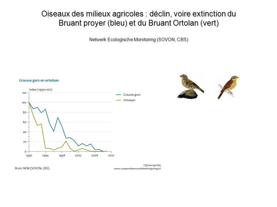 Oiseaux des milieux agricoles : déclin, voire extinction du Bruant proyer (bleu) et du Bruant Ortolan (vert) Netwerk Ecologische Monitoring (SOVON, CB