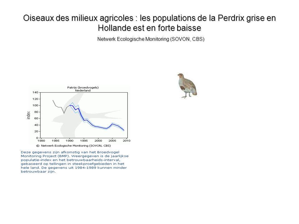Oiseaux des milieux agricoles : les populations de la Perdrix grise en Hollande est en forte baisse Netwerk Ecologische Monitoring (SOVON, CBS)