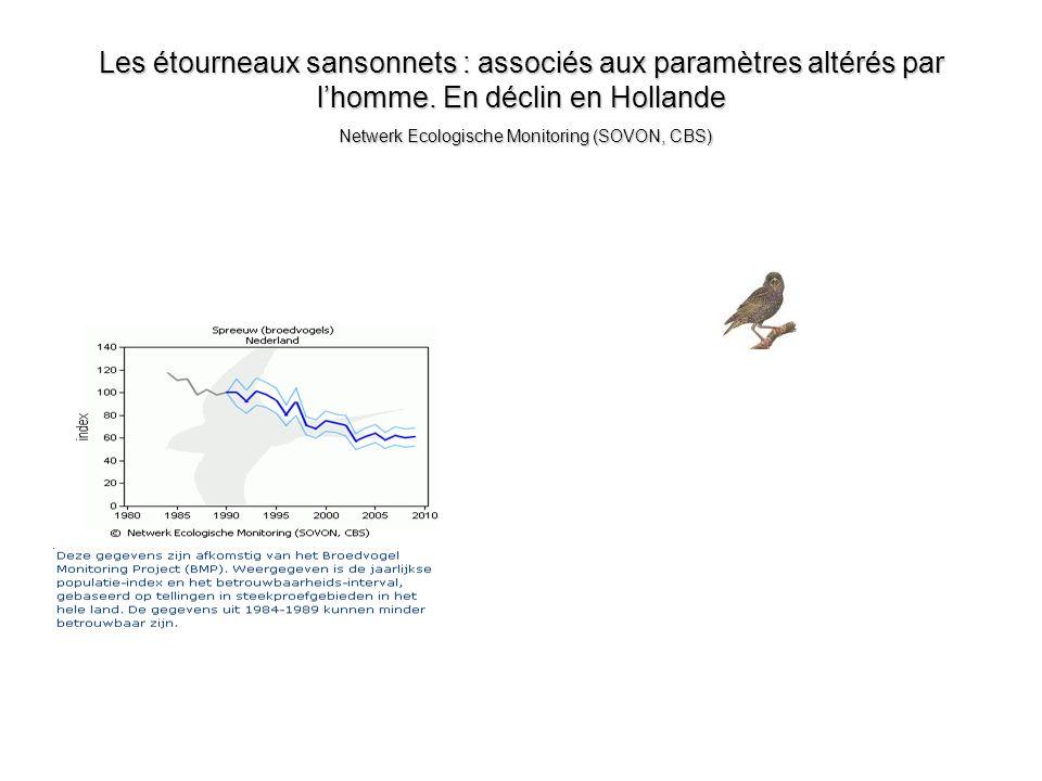 Les étourneaux sansonnets : associés aux paramètres altérés par lhomme. En déclin en Hollande Netwerk Ecologische Monitoring (SOVON, CBS)