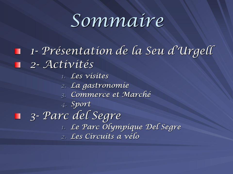 Sommaire 1- Présentation de la Seu dUrgell 2- Activités 1.