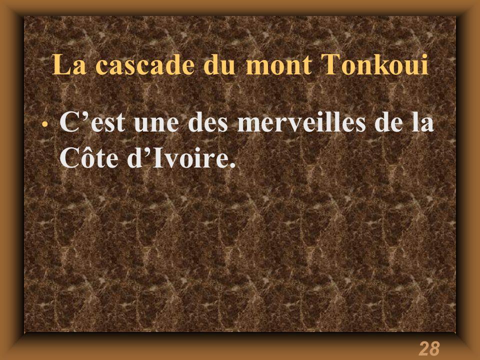 28 La cascade du mont Tonkoui Cest une des merveilles de la Côte dIvoire.