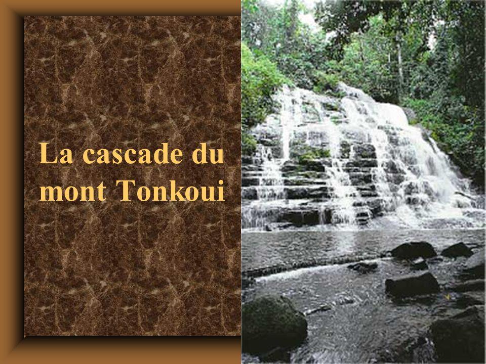 29 La cascade du mont Tonkoui