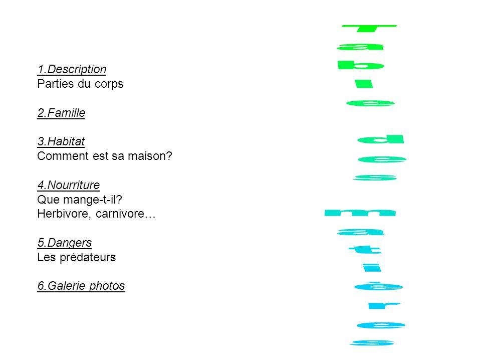 1.Description Parties du corps 2.Famille 3.Habitat Comment est sa maison? 4.Nourriture Que mange-t-il? Herbivore, carnivore… 5.Dangers Les prédateurs