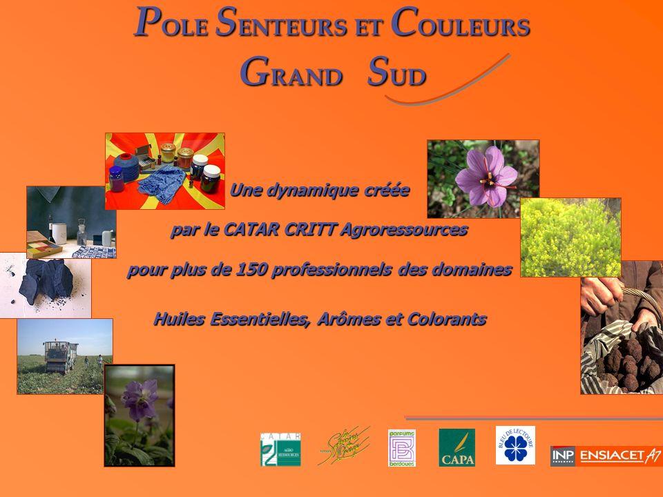 P OLE S ENTEURS ET C OULEURS G RAND S UD Une dynamique créée par le CATAR CRITT Agroressources pour plus de 150 professionnels des domaines Huiles Ess