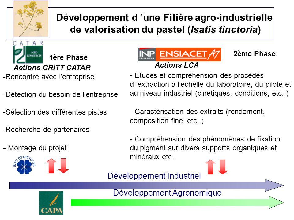 Développement d une Filière agro-industrielle de valorisation du pastel (Isatis tinctoria) 2ème Phase Actions LCA - Etudes et compréhension des procéd