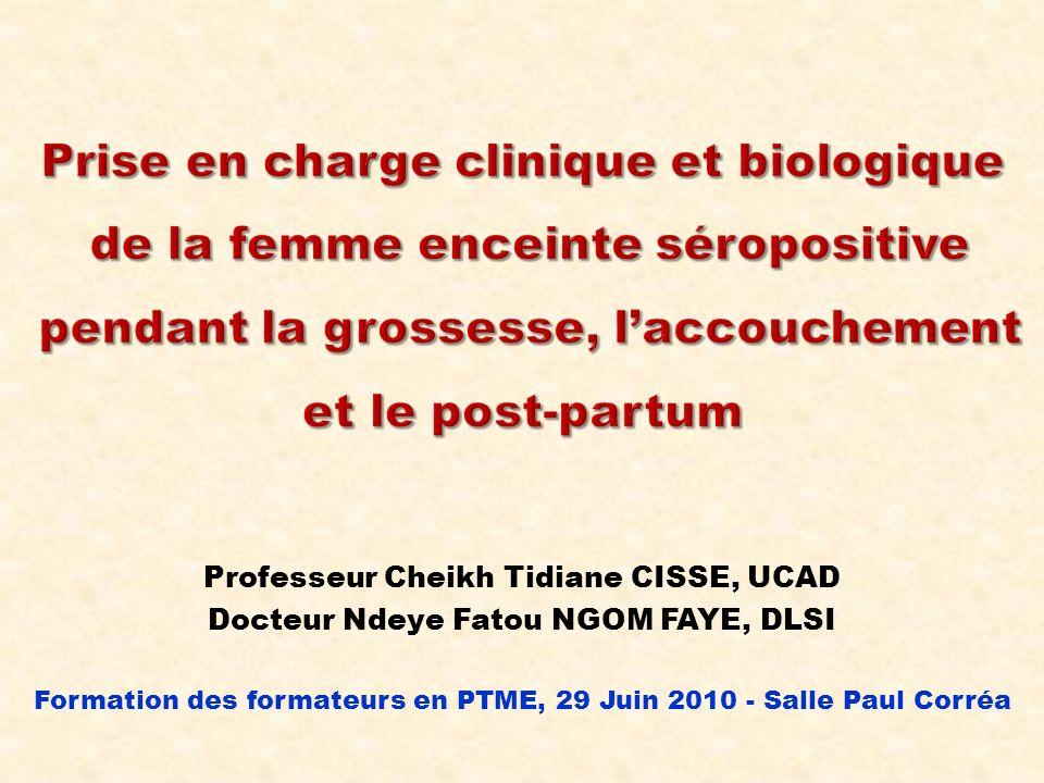 Professeur Cheikh Tidiane CISSE, UCAD Docteur Ndeye Fatou NGOM FAYE, DLSI Formation des formateurs en PTME, 29 Juin 2010 - Salle Paul Corréa