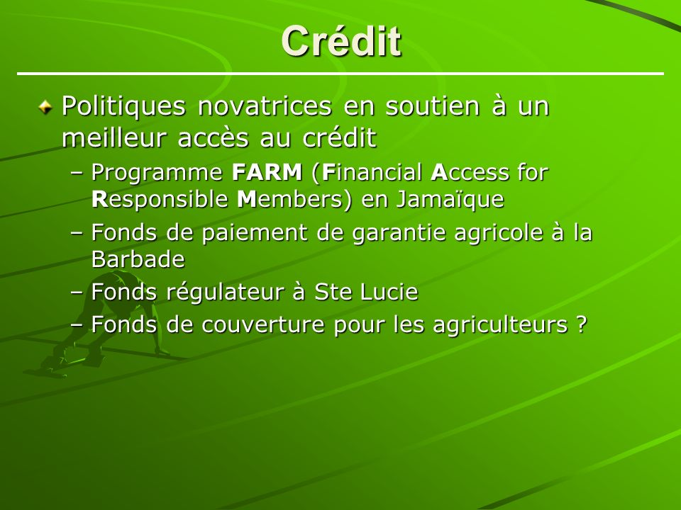 Crédit Politiques novatrices en soutien à un meilleur accès au crédit –Programme FARM (Financial Access for Responsible Members) en Jamaïque –Fonds de paiement de garantie agricole à la Barbade –Fonds régulateur à Ste Lucie –Fonds de couverture pour les agriculteurs ?