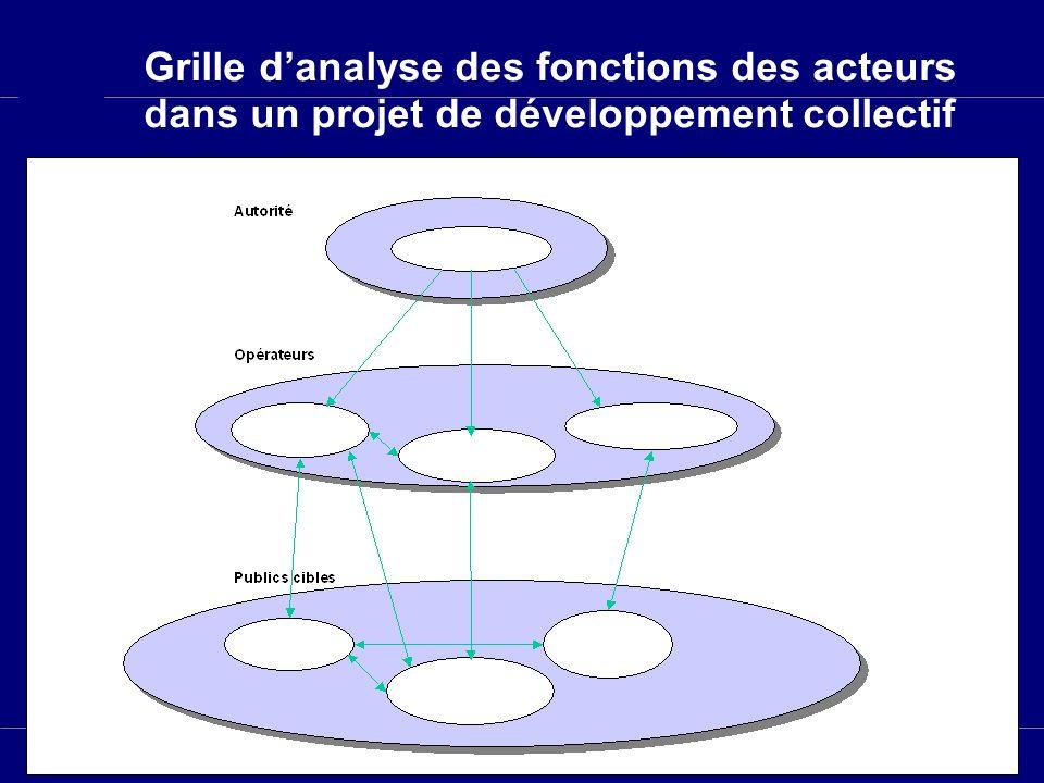 Slide 3 Grille danalyse des fonctions des acteurs dans un projet de développement collectif