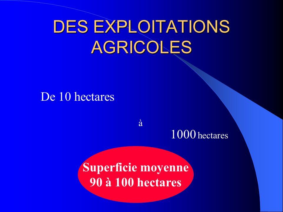 DES EXPLOITATIONS AGRICOLES De 10 hectares à 1000 hectares Superficie moyenne 90 à 100 hectares