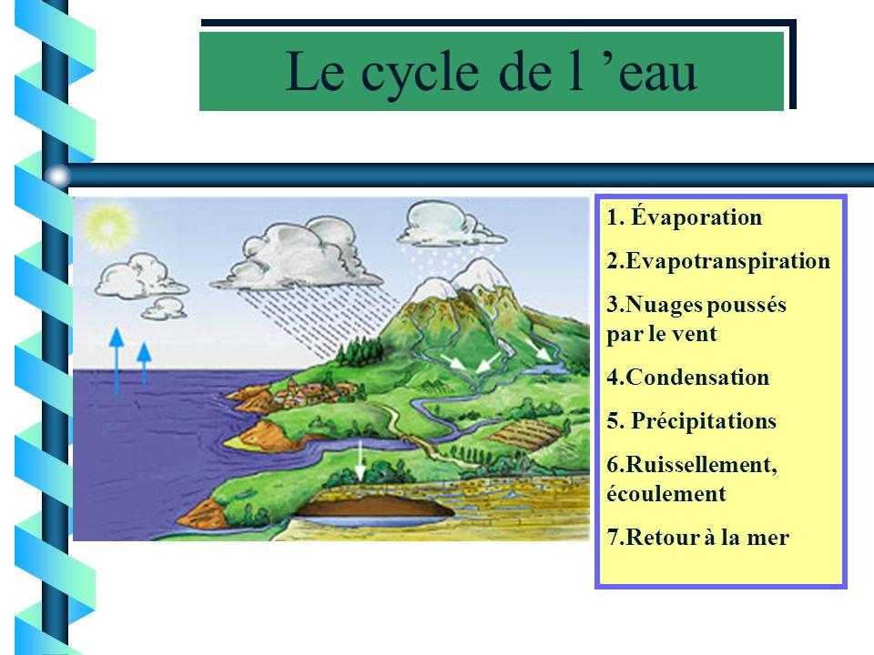 Le cycle de l eau b b Travail fait par les 5P de Saxon, classe de Yves Bruchez