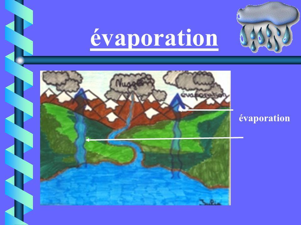 Le cycle de l eau 1. Évaporation 2.Evapotranspiration 3.Nuages poussés par le vent 4.Condensation 5. Précipitations 6.Ruissellement, écoulement 7.Reto