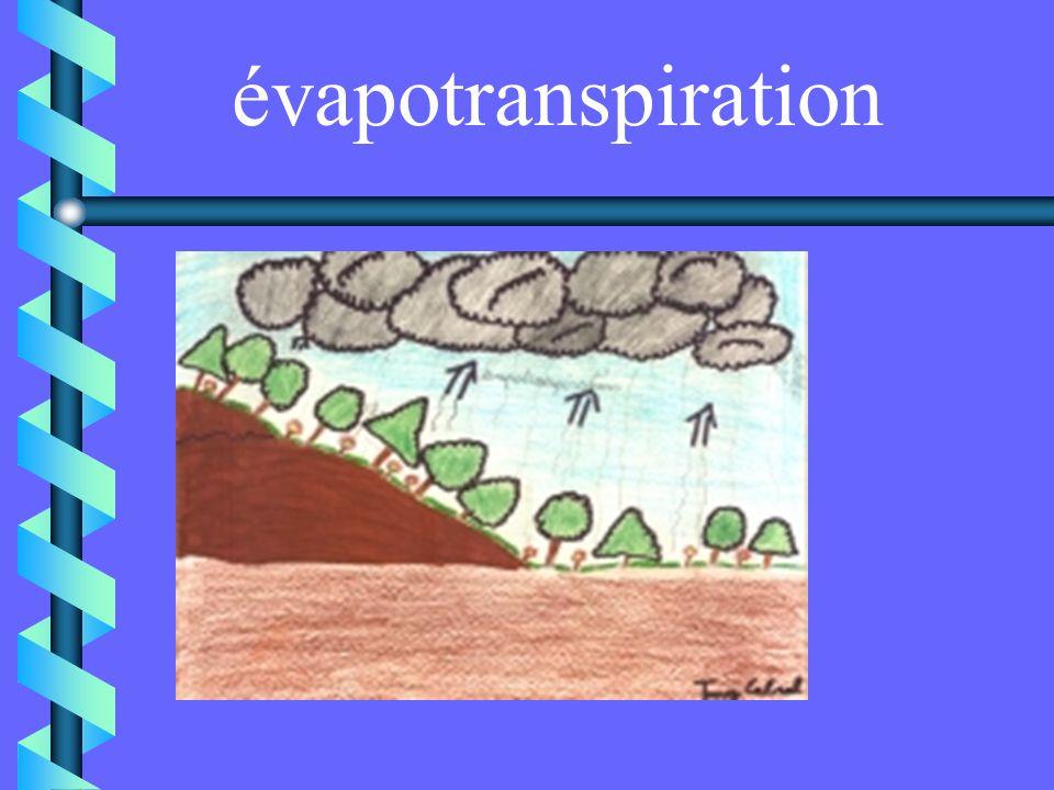 évaporation Ce phénomène se produit à la surface de la mer, des lacs, des rivières et des sols humides. Leau entre en contact avec des températures él