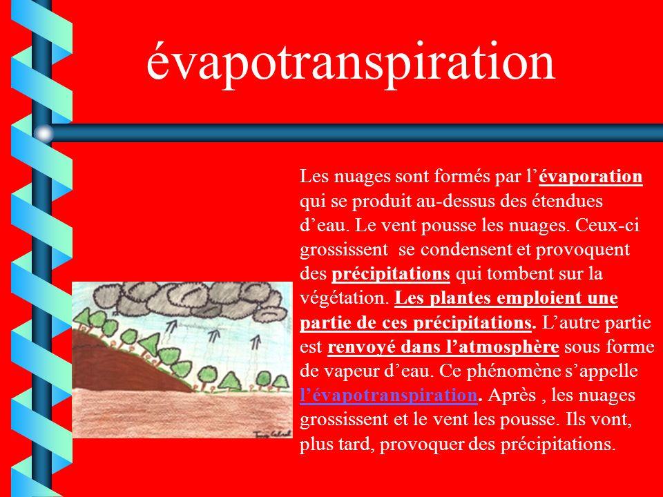 évapotranspiration