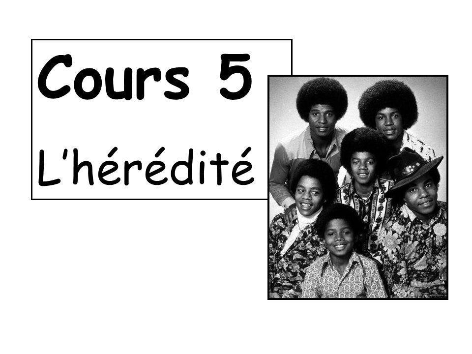 Cours 5 Lhérédité