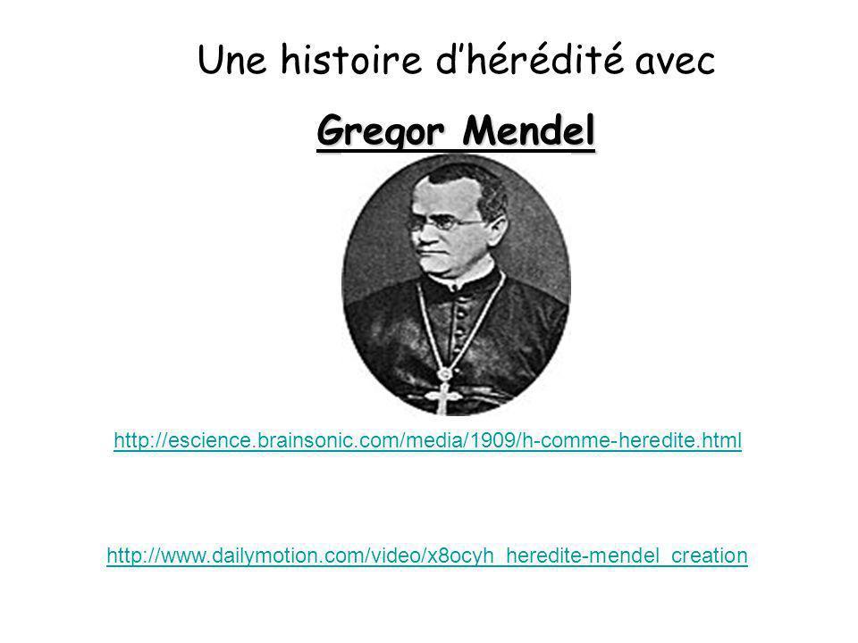 Une histoire dhérédité avec Gregor Mendel http://www.dailymotion.com/video/x8ocyh_heredite-mendel_creation http://escience.brainsonic.com/media/1909/h
