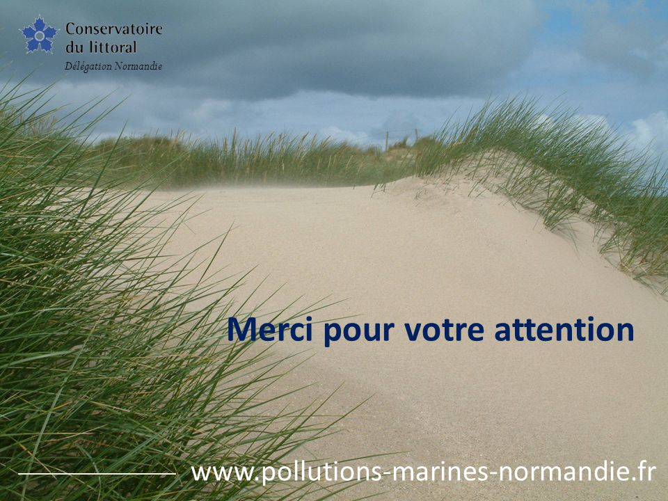 Merci pour votre attention Délégation Normandie www.pollutions-marines-normandie.fr