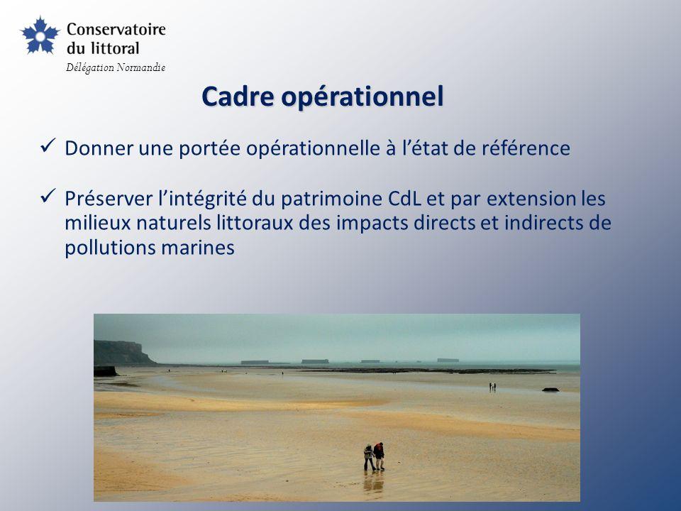 Participer à leffort de vigilance sur le littoral /aléa pollution marine Répondre aux besoins des collectivités locales normandes / prise en compte enjeu écologique Recherche de complémentarité avec le dispositif ORSEC volet POLMAR Objectifs du cadre opérationnel RESEAU DE CORRESPONDANTS Délégation Normandie