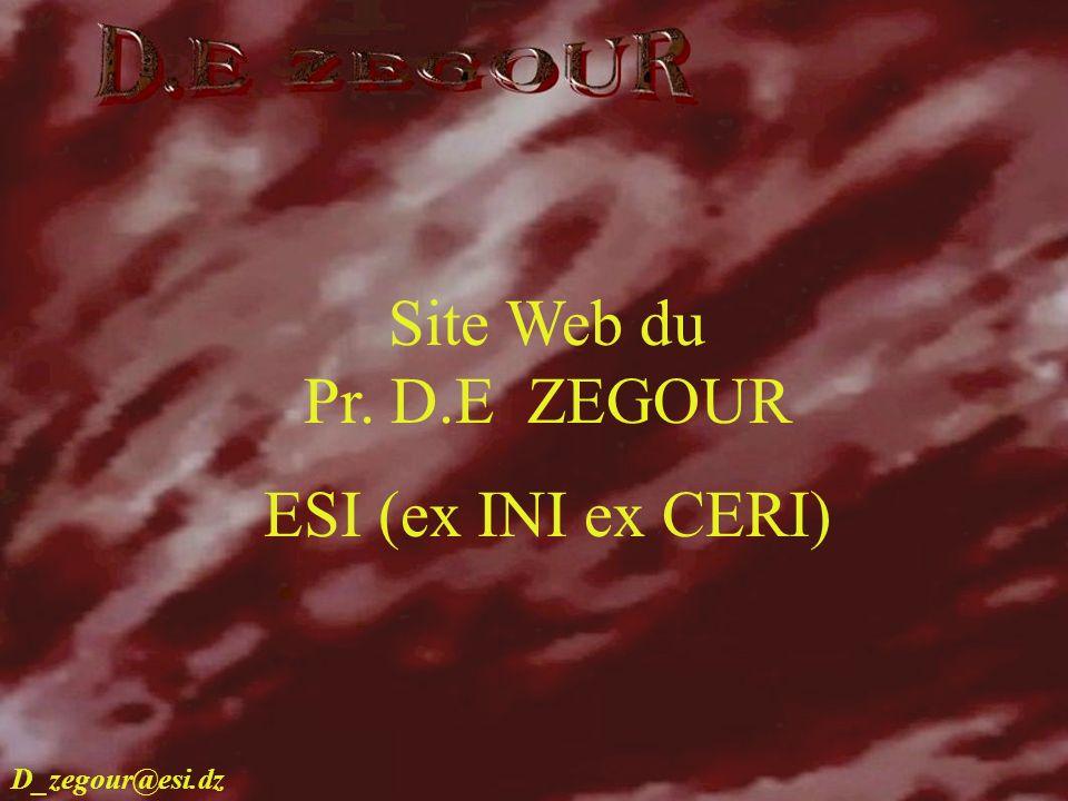 D.E ZEGOUR www.multimania.com/zegour 1 Site Web du Pr. D.E ZEGOUR ESI (ex INI ex CERI) D_zegour@esi.dz