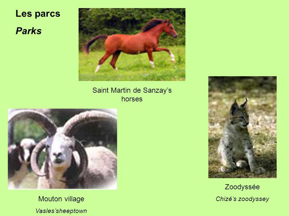 Saint Martin de Sanzays horses Mouton village Vaslessheeptown Zoodyssée Chizés zoodyssey Les parcs Parks