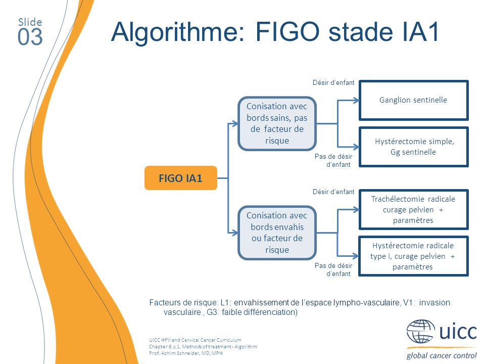 UICC HPV and Cervical Cancer Curriculum Chapter 6.c.1. Methods of treatment - Algorithm Prof. Achim Schneider, MD, MPH Slide 03 Algorithme: FIGO stade