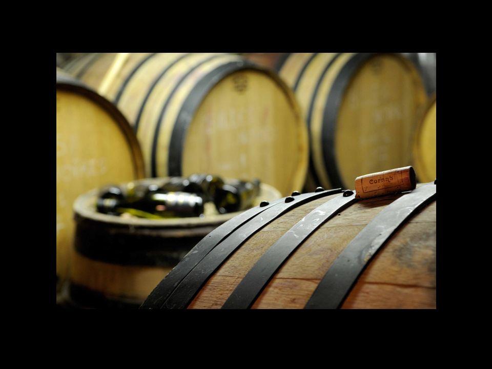 Le Domaine du Coulet… Installé depuis 1998, Matthieu Barret, jeune vigneron de 33 ans exploite 10 ha en appellation Cornas plantés sur des terrasses exposées vers le soleil levant.