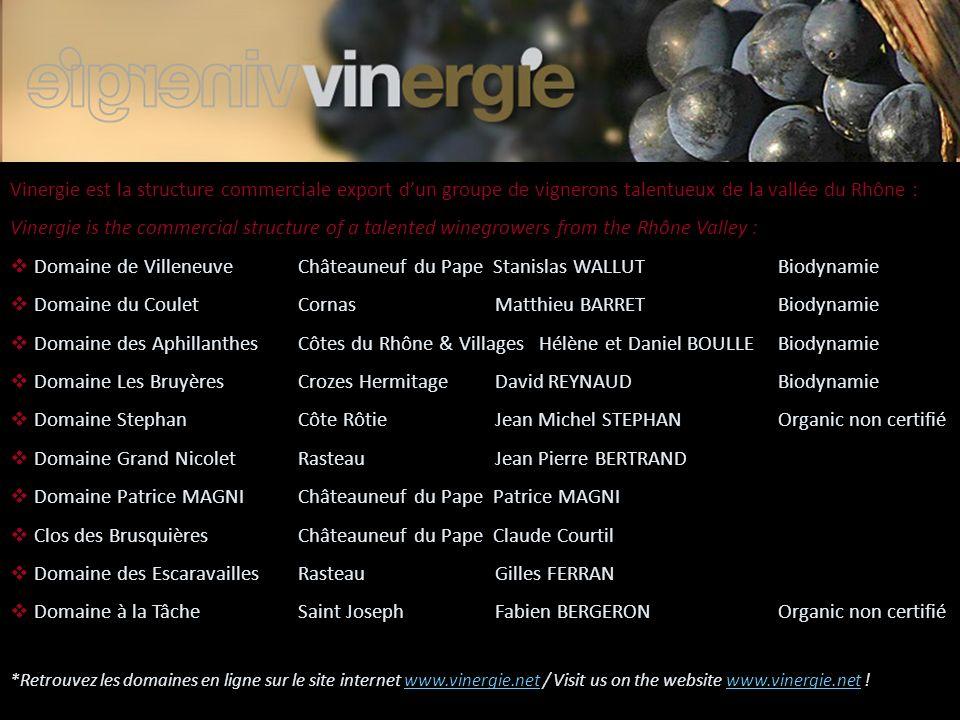 Vinergie est la structure commerciale export dun groupe de vignerons talentueux de la vallée du Rhône : Vinergie is the commercial structure of a tale