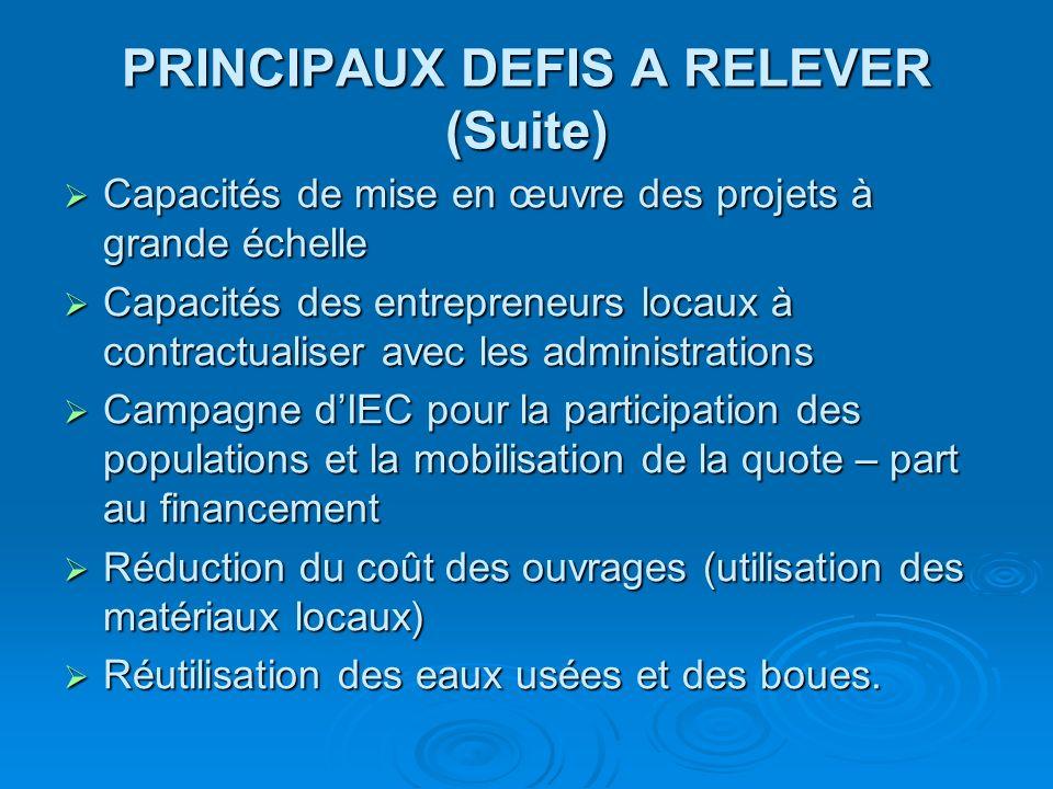 PRINCIPAUX DEFIS A RELEVER (Suite) Capacités de mise en œuvre des projets à grande échelle Capacités de mise en œuvre des projets à grande échelle Cap