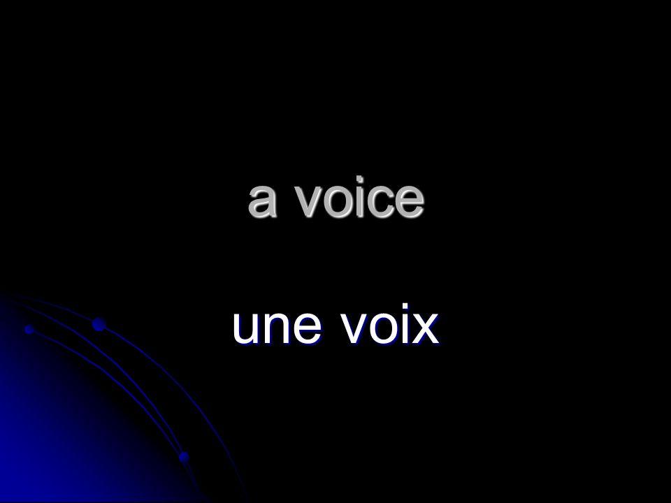 a voice une voix