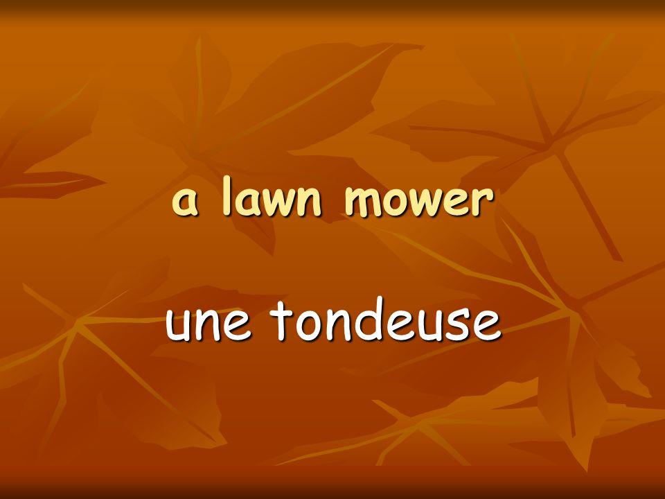a lawn mower une tondeuse