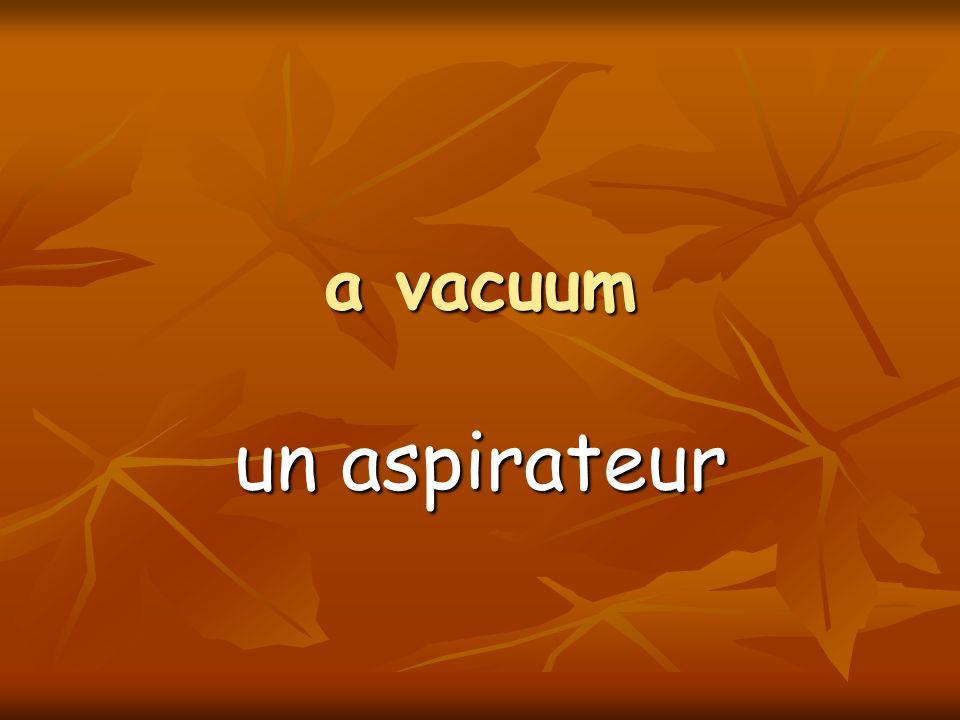 a vacuum un aspirateur