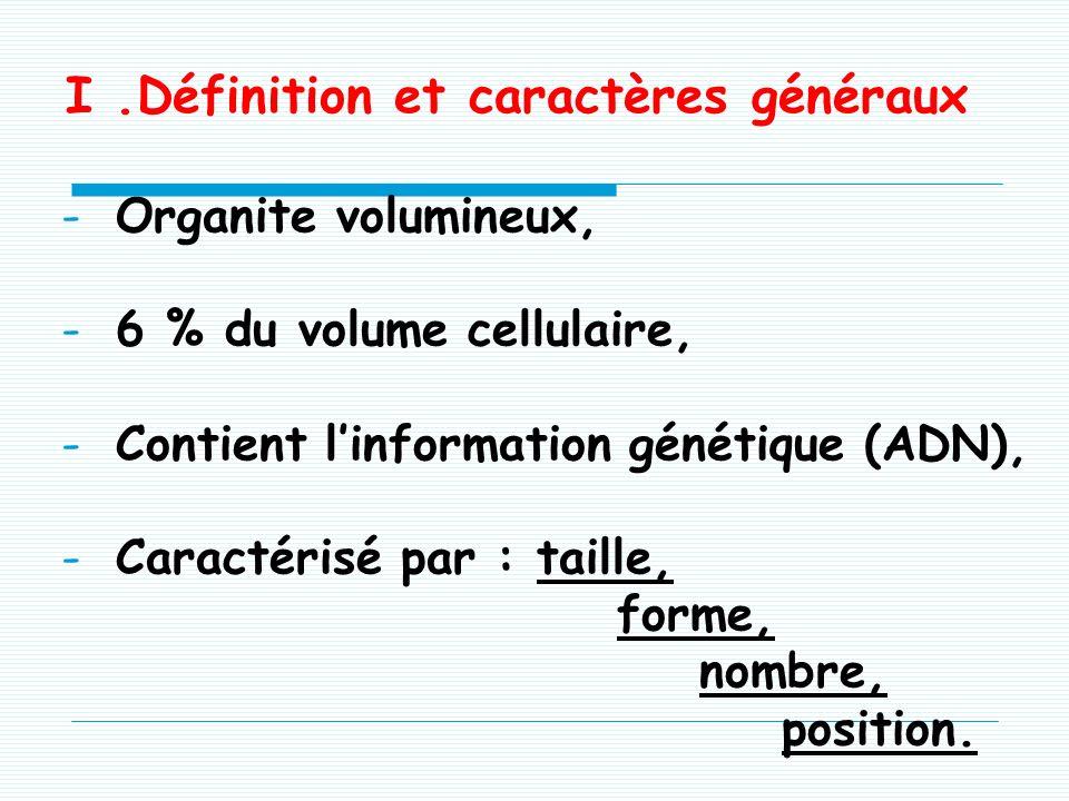 I.Définition et caractères généraux -Organite volumineux, -6 % du volume cellulaire, -Contient linformation génétique (ADN), -Caractérisé par : taille, forme, nombre, position.