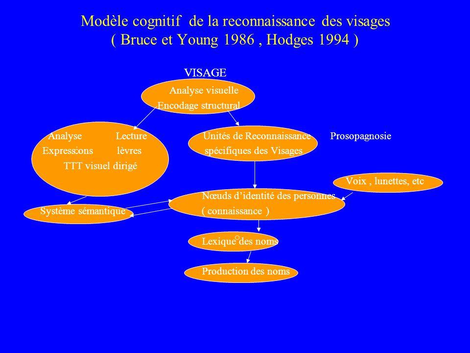 Modèle cognitif de la reconnaissance des visages ( Bruce et Young 1986, Hodges 1994 ) VISAGE Analyse visuelle Encodage structural Analyse Lecture Unit