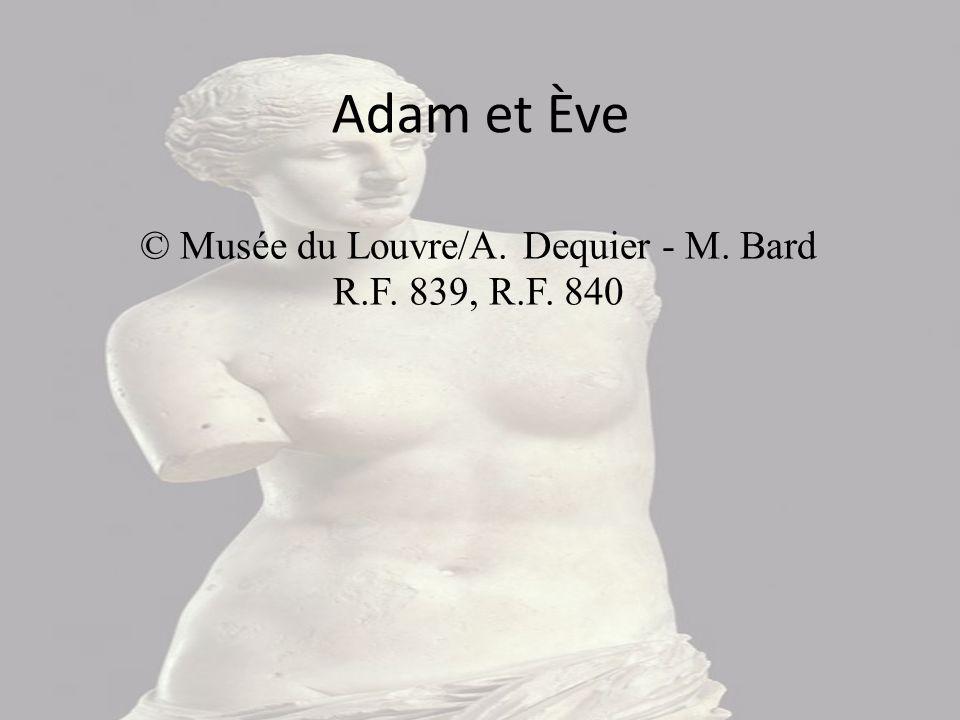 Adam et Eve sont debout et nus, une feuille de vigne recouvrant leurs parties génitales ( le tableau datant de la Renaissance ). Eve tient le fruit dé