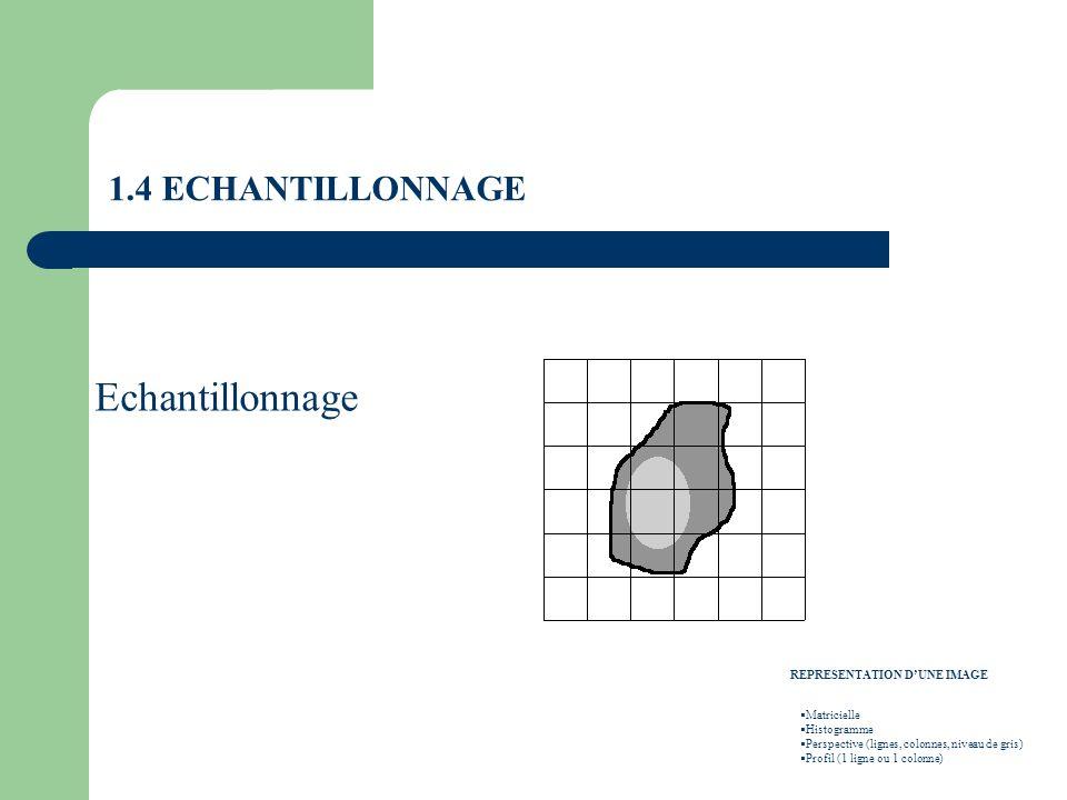 Echantillonnage REPRESENTATION DUNE IMAGE Matricielle Histogramme Perspective (lignes, colonnes, niveau de gris) Profil (1 ligne ou 1 colonne)
