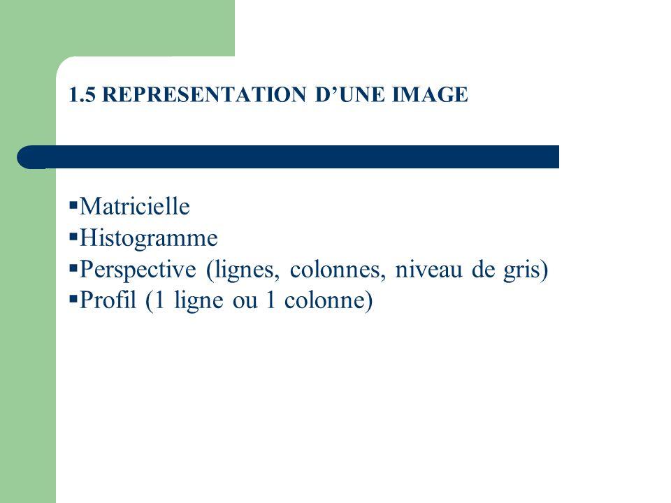 1.5 REPRESENTATION DUNE IMAGE Matricielle Histogramme Perspective (lignes, colonnes, niveau de gris) Profil (1 ligne ou 1 colonne)